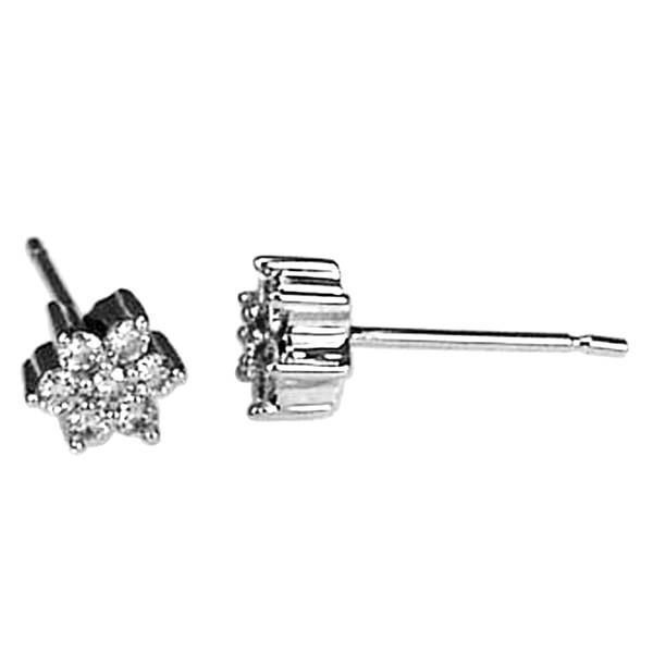 Earrings in 18 Kt White Gold and Diamonds
